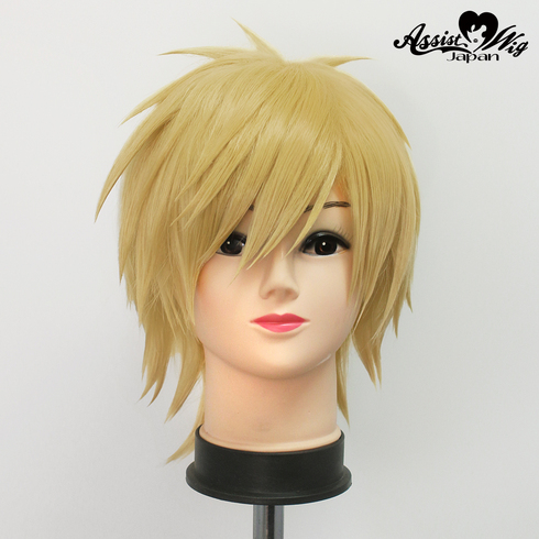 Character wig MANSHIN Ruin secret service Yujo Yoji low back pain