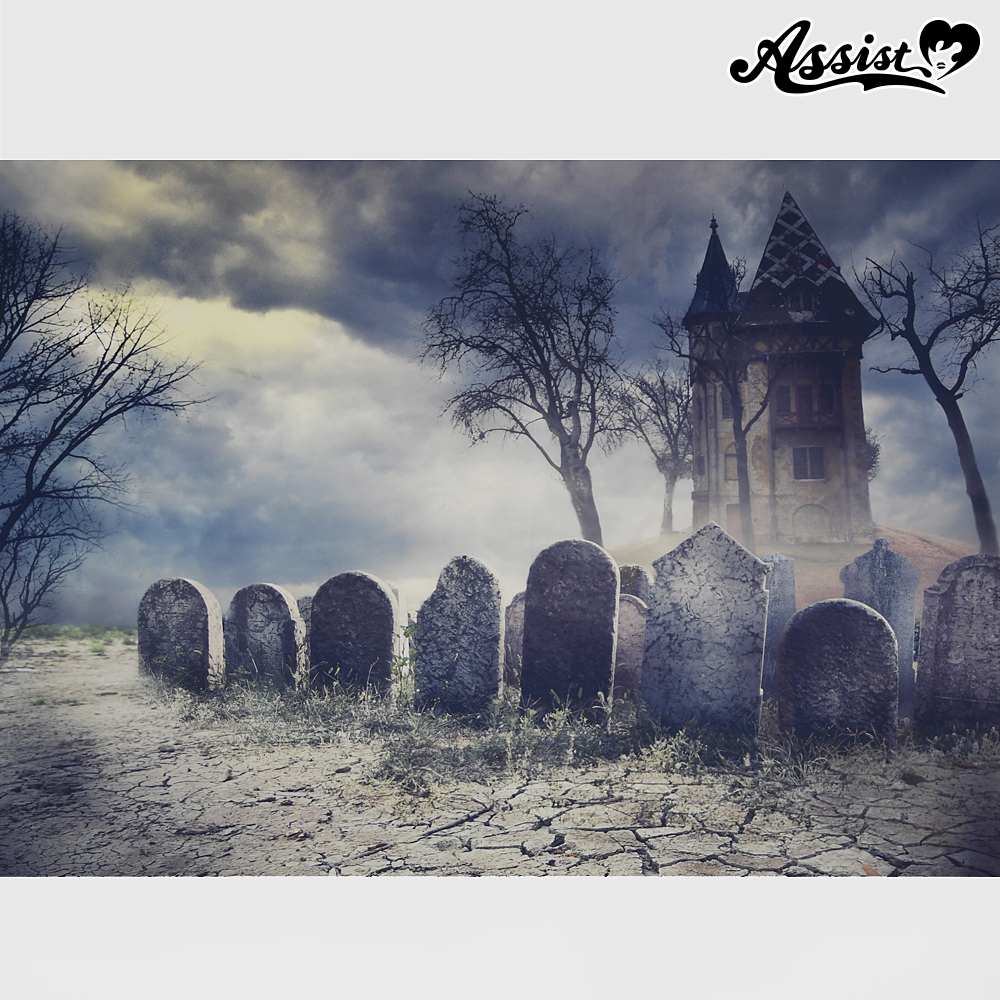 ★ Limited time sale ★ Background cloth Cemetery type 1