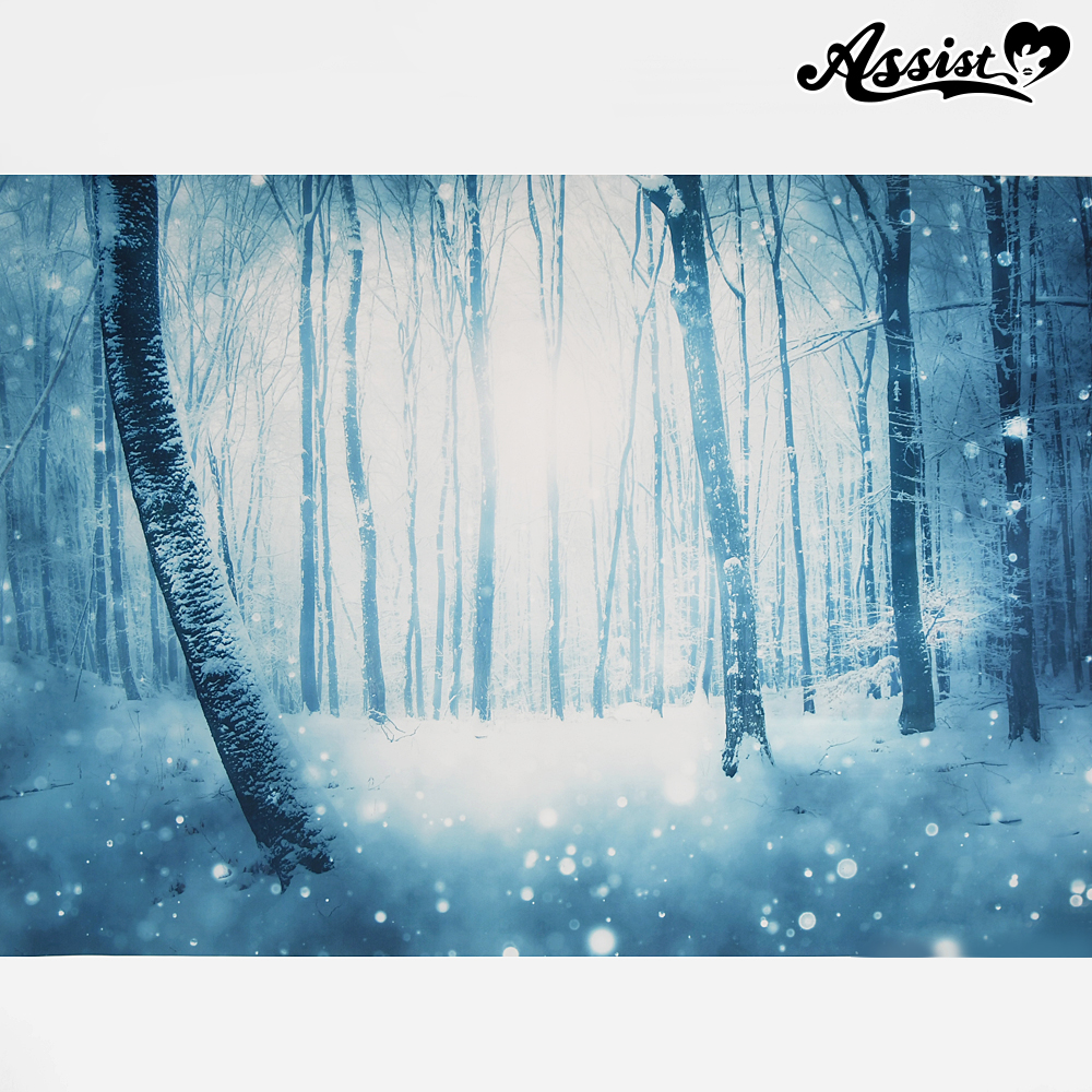 ★ Limited time sale ★ Background cloth Snow forest