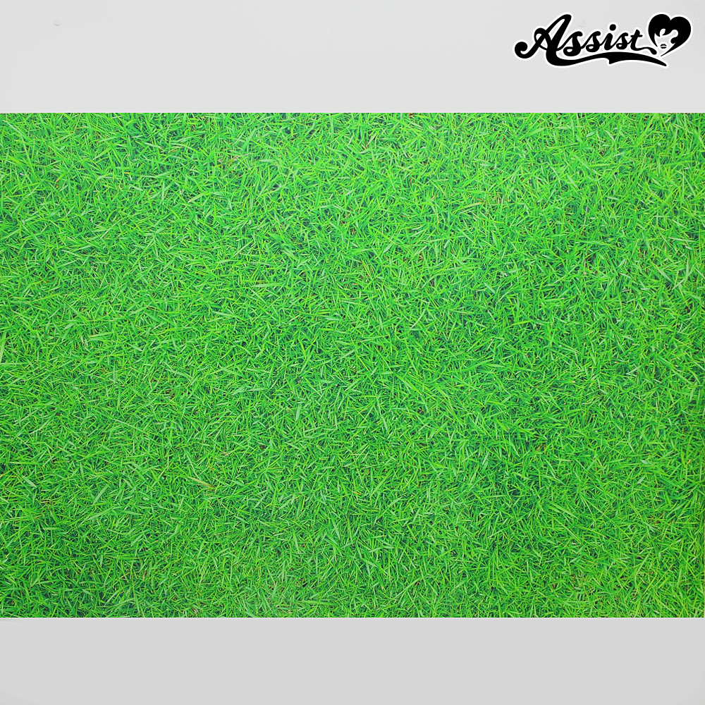 ★ Limited time sale ★ Background cloth (floor Ver.) A lawn