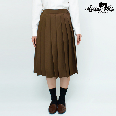 Color long pleated skirt Brown