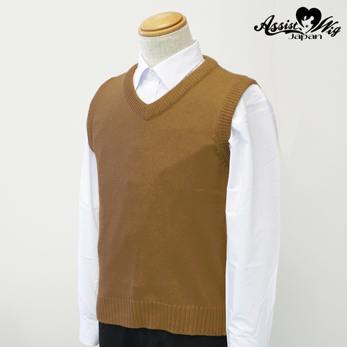 School vest Brown