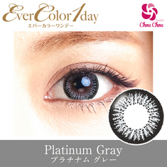 Ever Color 1day Platinum Gray