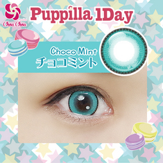 Assist Chou Chou Puppilla 1 Day Choco Mint