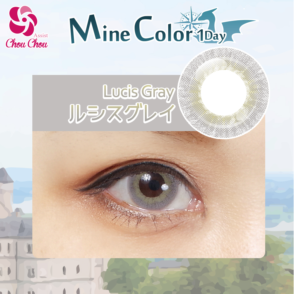 Assist ChouChou Mine Color 1Day Lucis gray